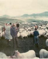 Cleidir Fank 1975